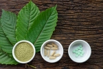 kratom, Pain Treating Herbal Supplement, this pain treating herbal supplement is not safe for use, Healthy living